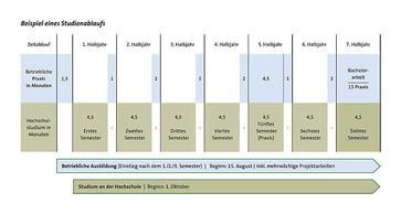 Struktura studia srozšířenou praxí